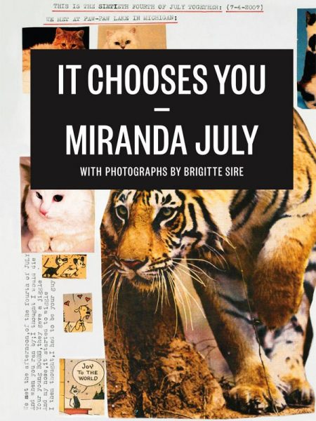 capa do livro it chooses you